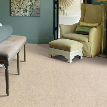 Caress Carpet by Shaw | Bay Shore, NY